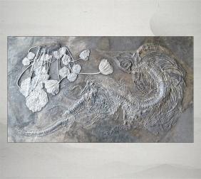 鱼龙带7幼崽、海百合