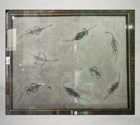 贵州龙化石收藏