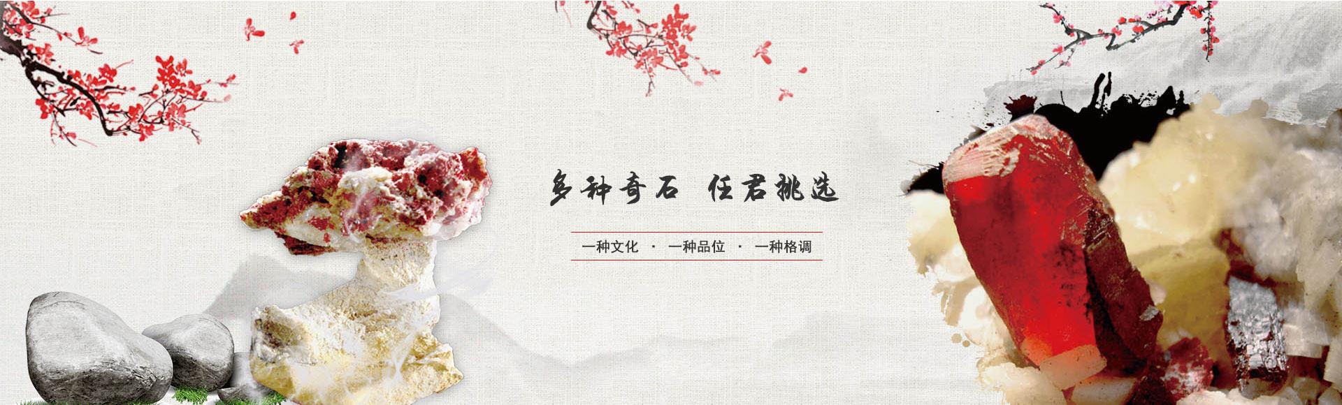 贵州奇石公司